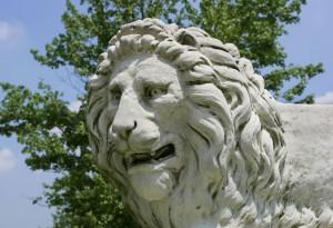 lion_1024
